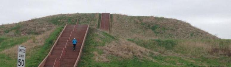 Cahokia Mounds up for National Park status thanks to new bill introduced to Congress