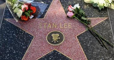 Stan Lee star