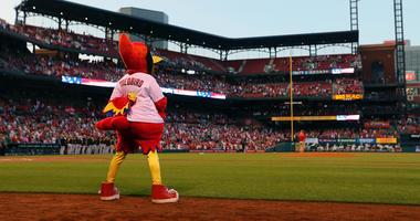 The St. Louis Cardinals mascot Fredbird standing for the national anthem at Busch Stadium.