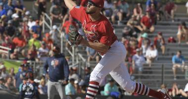 St. Louis Cardinals pitcher Daniel Poncedeleon.