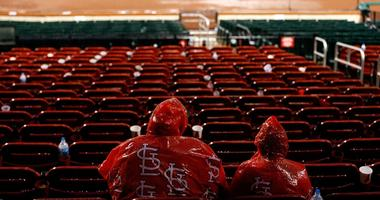 Cardinals fans in rain