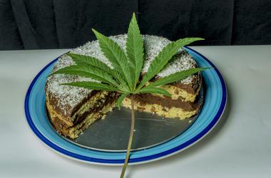 Coconut chocolate cake on blue dish with marijuana green leaf