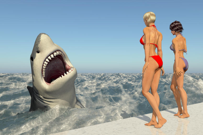 Attractive women watching a great white shark