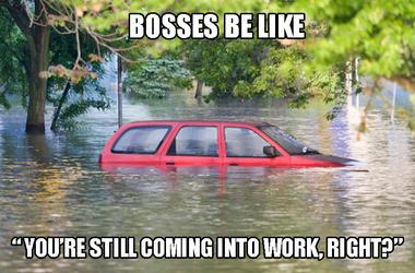 boss meme