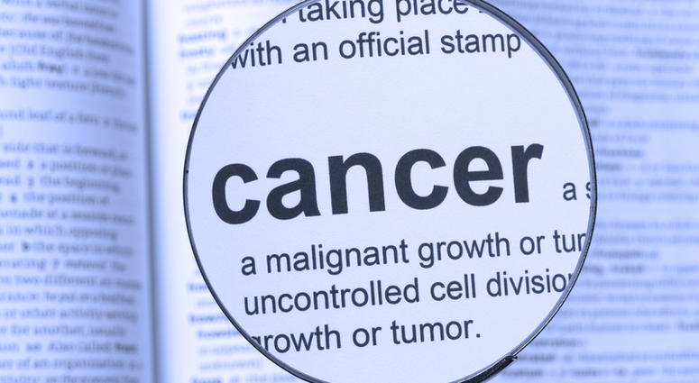 Cure For Cancer Could Be Discovered 'Within One Year' Israel