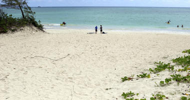 Oahu's Kailua beach is named best in the US by 'Dr. Beach'