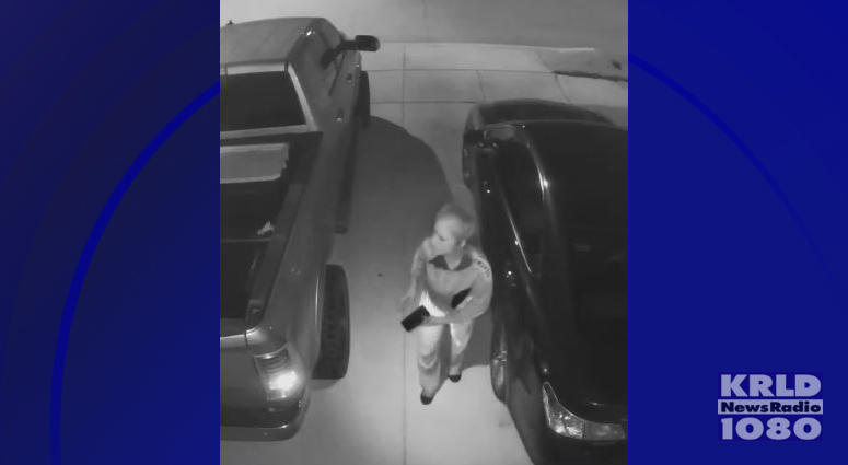 Car Burglar Caught On Video