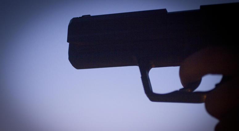 Real Gun Or Fake Gun?