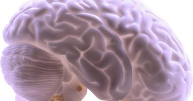 Preserving Brain Data