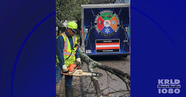 Arlington Debris Cleanup