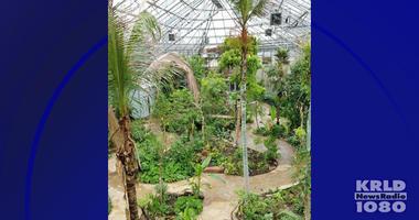 Fort Worth Botanic Garden Rainforest Conservatory