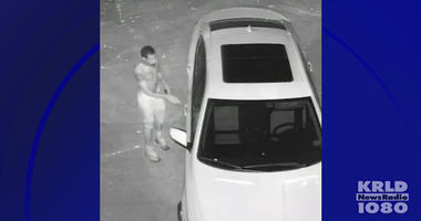 Car Burglary, Gun Theft