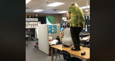 Teacher vs Snake