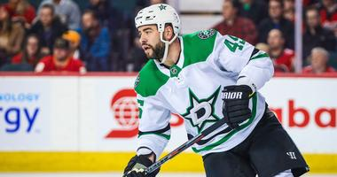 Dallas Stars defenseman Roman Polak