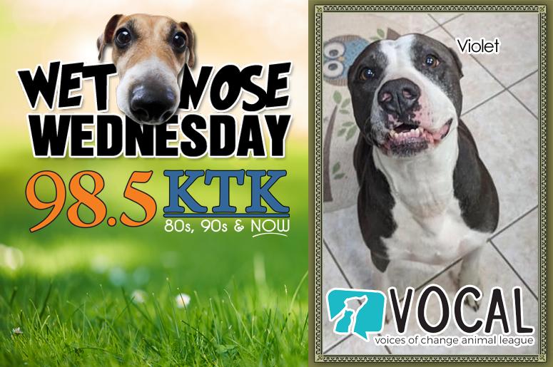 98 5 KTK Gainesville Ocala Wet Nose Wednesday Violet April