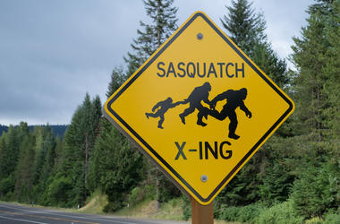 Sasquatch, Bigfoot, Sasquatch Crossing, Road Sign, Highway, Oregon, Wilderness
