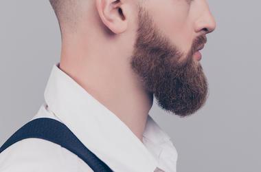 Portrait, Male, Face, Beard