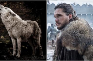 Jon Snow and direwolves