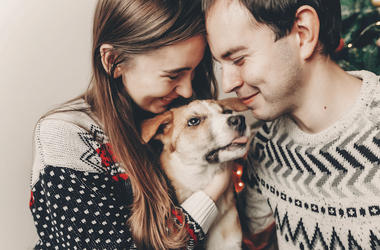 Man, Woman, Couple, Dog, Christmas