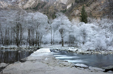 Frozen Trees, Small River