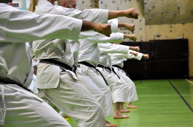 Martial Arts, Karate, Students, School, Punch, Oi Zuki