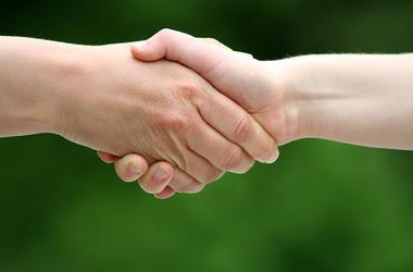 Hands, Handshake, Green Background