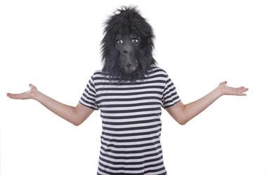 guy in a gorilla mask