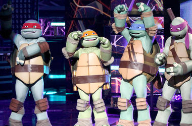 Teenage Mutant Ninja Turtles, TMNT