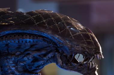 Alien, Xenomorph, Mask, Alien Vs Predator