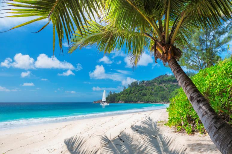 Man Who Can't Afford Summer Vacation Makes Fake Hawaii Trip