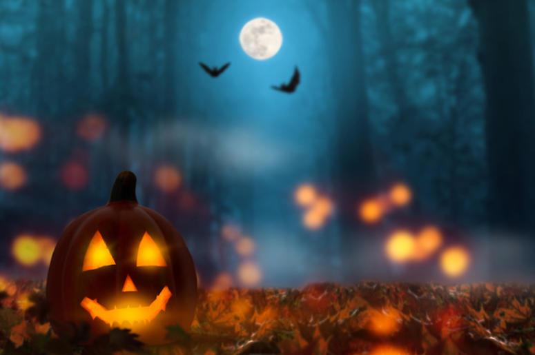 Celebrate The Spooky Season Wi...
