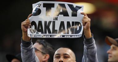 An Oakland Raiders fan
