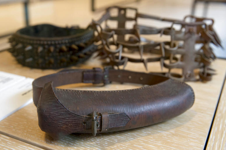 An American WWII messenger collar, foreground, on display next to other spike collars.