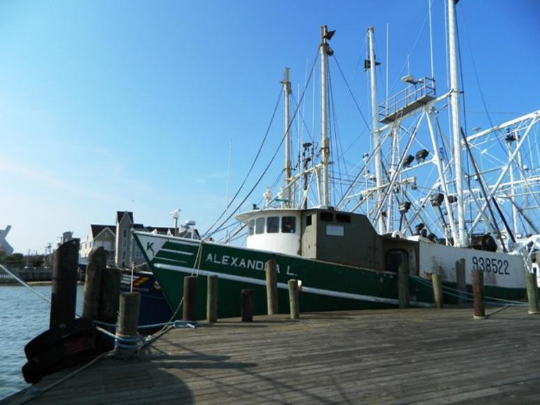 Cape May United States Coast Guard Training Center