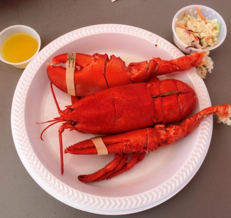 Abbott's Lobster