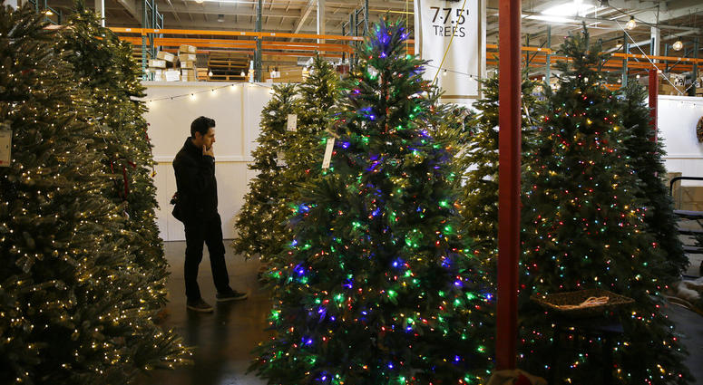 In this Friday, Nov. 30, 2018, photo, a man looks at artificial Christmas trees for sale at the Balsam Hill Outlet store in Burlingame, Calif.