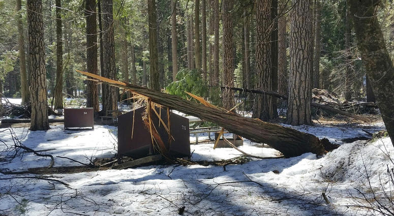 In this photo released Wednesday, March 13, 2019, by the National Park Service, is a damaged bear box after the recent heavy snowpack in Yosemite National Park, Calif.