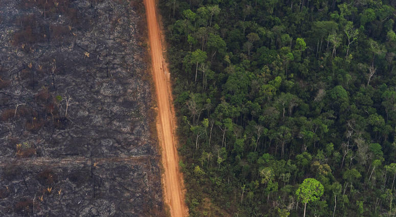 Lingering smoke in the Amazon caused concern Tuesday among Brazilians who say that respiratory problems, particularly among children and the elderly, have increased as fires in the region rage.