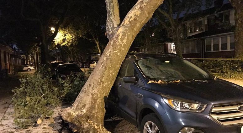 In Frankford, a tree slammed into car, and the car actually held the tree up, preventing it from falling further.