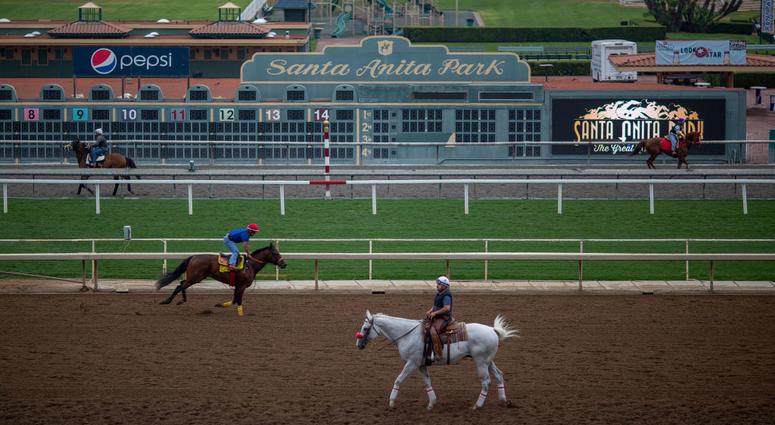 Santa Anita Park racetrack