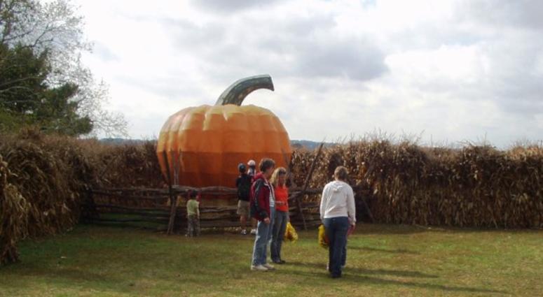 Merrymead Farm corn maze