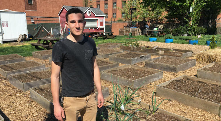 Connor Caruso, president of the Temple Community Garden, stands in front of some of the beds students and neighborhood residents will plant with vegetables.