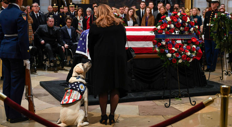 President George H.W. Bush's service dog Sully with Valerie Cramer of America's VetDogs at the U.S. Capitol