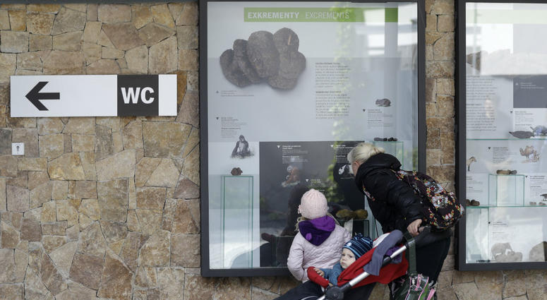 In this picture taken on Monday, May 6, 2019, visitors view an exhibition of animal excrements at the Prague Zoo, Czech Republic.