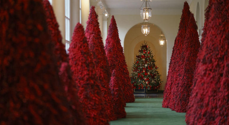 Topiary trees line the East colonnade during the 2018 Christmas Press Preview at the White House in Washington, Monday, Nov. 26, 2018.