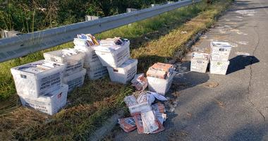 Postal service officials say mail that should have been delivered to people in the city's Roxborough section wound up dumped on a street in Camden County, New Jersey.