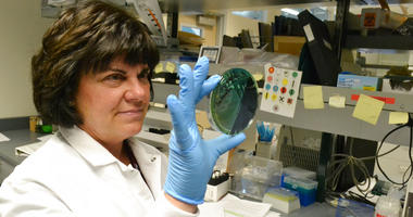Scientist Karen Xavier holds a petri dish containing a stool sample of small bacteria colonies in Denver.