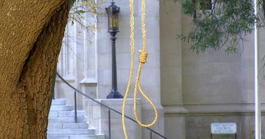 In this photo provided by WLBT-TV a noose hangs on a tree on the state capitol grounds in Jackson, Miss. on Monday, Nov. 26, 2018.