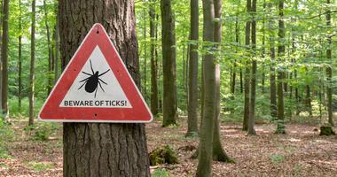 Tick warning.