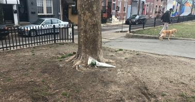 esidents in a South Philadelphia neighborhood are still in shock after a deadly assault at a park over the weekend, one that witnesses say was sparked by an unleashed dog.